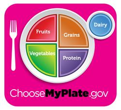 Choose my plate.gov diagram of a balanced meal